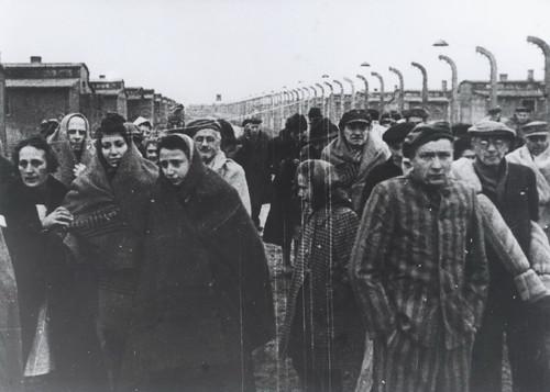 groupe_déportés_Auschwitz