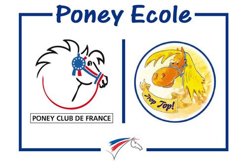 cartouche_poney_école